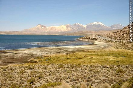 Chungará Lake. Nevados de Quimsachata - Photos of the Province of Parinacota - Chile - Others in SOUTH AMERICA. Image #65158