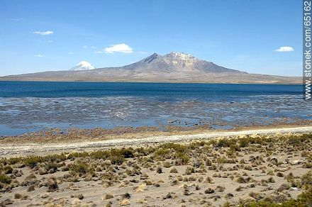 Chungará Lake. Kishi Quisini volcano - Photos of the Province of Parinacota - Chile - Others in SOUTH AMERICA. Image #65162
