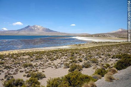 Chungará Lake. Kishi Quisini volcano - Photos of the Province of Parinacota - Chile - Others in SOUTH AMERICA. Image #65164