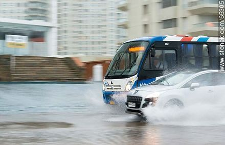 Car and bus circulating on the flooded promenade - Photos of promenades, URUGUAY. Image #65305