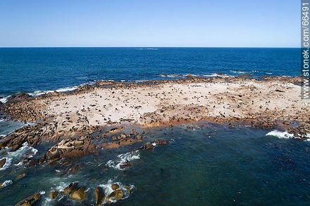 Aerial view of Isla Rasa and its sea lion colony - Photos of Cabo Polonio. - Department of Rocha - URUGUAY. Image #66491
