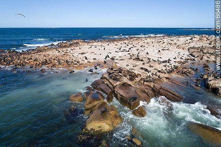 Aerial view of Isla Rasa and its sea lion colony - Photos of Cabo Polonio. - Department of Rocha - URUGUAY. Image #66486