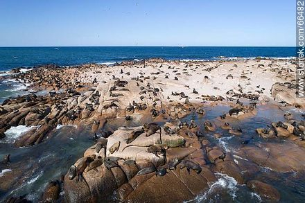 Aerial view of Isla Rasa and its sea lion colony - Photos of Cabo Polonio. - Department of Rocha - URUGUAY. Image #66482