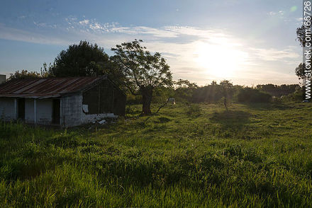 Modest house in the countryside - Photos of rural area of Colonia - Department of Colonia - URUGUAY. Image #66726