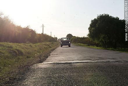 Camino de las Tunas, Carmelo - Photos of rural area of Colonia - Department of Colonia - URUGUAY. Image #66741