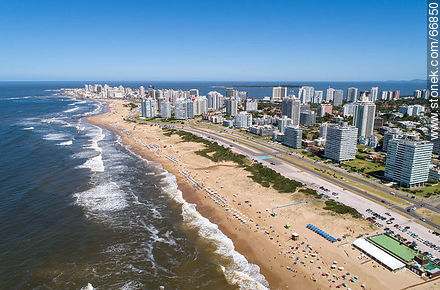 Aerial view of the Lorenzo Batlle Pacheco promenade over Brava beach and its towers. - Photographs of beaches of Punta del Este - Punta del Este and its near resorts - URUGUAY. Image #66850