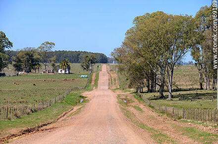 Route 43 on tosca - Variety of photos of the Department of Durazno - Durazno - URUGUAY. Image #69189