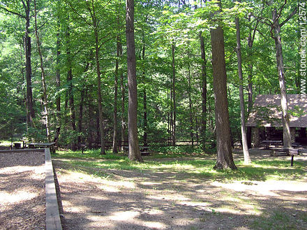 Voorhees Park - Photos of the Hunterdon County - State ofNew Jersey - USA-CANADA. Image #12574