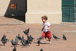 Photo #31546 - Kid and pigeons