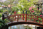 Photo #32824 - Bridge in Montevideo Japanese Garden.