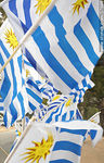 Photo #37668 - Uruguayan flags.
