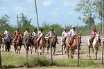 Photo #39648 - Riders in Patria Gaucha