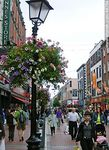 Photo #48764 - Pedestrian shopping street in Dublin. Ornaments petunias.