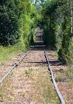 V�as del tren a Paysand� desde Chapicuy - Foto #57332
