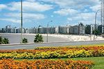 Foto #60043 - Flower beds on Rambla Rep. of Peru. Yellow and orange flowers