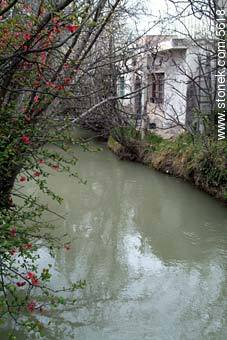 River channels in Gaiman City - Photographs of Gaiman - Province of Chubut - ARGENTINA. Image #5618