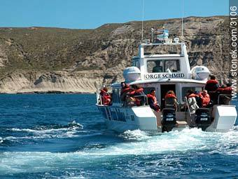 Motor boat specially prepared for whales sighting. - Photographs of Puerto Pirámides - Province of Chubut - ARGENTINA. Image #3106