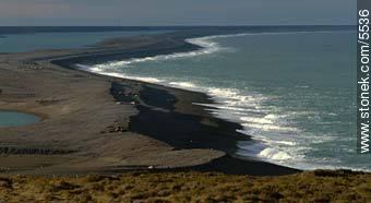 Photographs of Peninsula Valdes - Province of Chubut - ARGENTINA. Image #5536