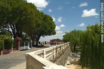Colonia´s promenade - Photos of Colonia del Sacramento - Department of Colonia - URUGUAY. Image #5946