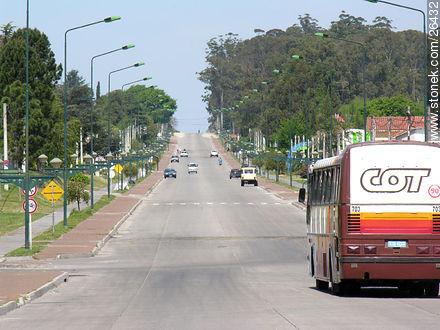 Photos of Nueva Helvecia - Department of Colonia - URUGUAY. Image #26432