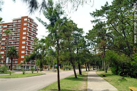 Photos of Atlantida - Department of Canelones - URUGUAY. Image #2529