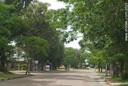 Photos of Atlantida - Department of Canelones - URUGUAY. Image #2523