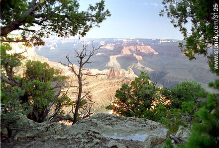 Photographs of Grand Canyon - USA-CANADA. Image #3125