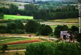 Photos of the Uruguayan Countryside - URUGUAY. Image #3517