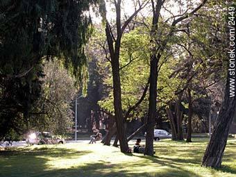 Photos of Prado - Department and city of Montevideo - URUGUAY. Image #2449