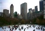 Photo #1985 - Central Park in winter.