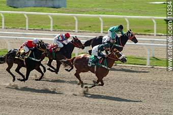 Photos of Maroñas horse racetrack - Department and city of Montevideo - URUGUAY. Image #10334