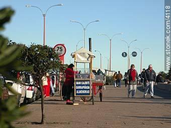 Photos of Parque Rodo and Playa Ramirez - Department and city of Montevideo - URUGUAY. Image #4118