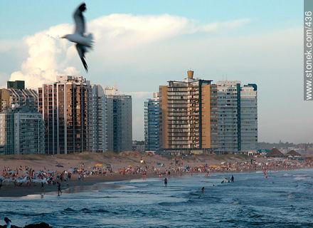 El Emir beach. Begining of the Playa Brava at the east side of Peninsula. - Photographs of beaches of Punta del Este - Punta del Este and its near resorts - URUGUAY. Image #436