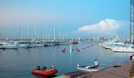 Port of Punta del Este in the evening. - Photographs of the port of Punta del Este - Punta del Este and its near resorts - URUGUAY. Image #437