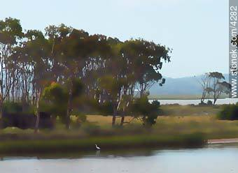 Photos of La Barra and Manantiales - Punta del Este and its near resorts - URUGUAY. Image #4282
