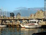 Photo #2158 - Port in Punta del Este