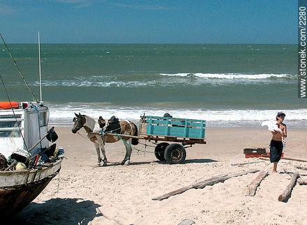 Photos of Punta del Diablo - Department of Rocha - URUGUAY. Image #2280