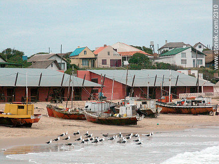 Photos of Punta del Diablo, URUGUAY. Image #2310