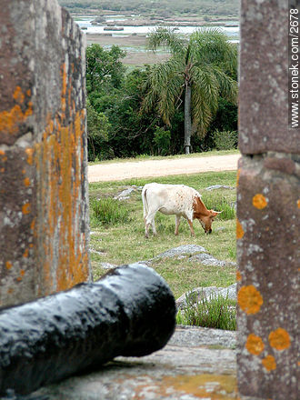 Photos of San Miguel fortress - Department of Rocha - URUGUAY. Image #2678